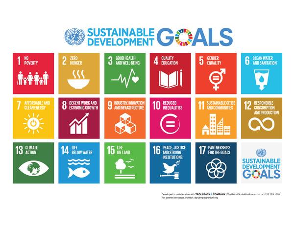 E SDG Poster_-Letter